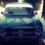 auta66